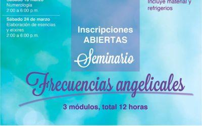 Seminario de Frecuencias Angelicales